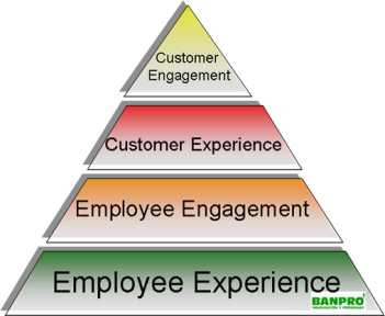 Del employee al customer experience