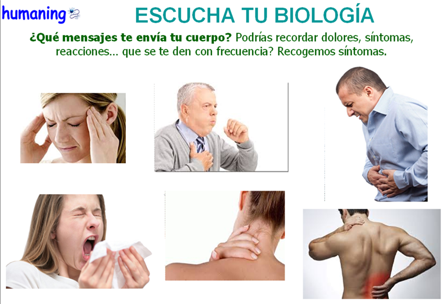 causas emocionales de solfa syllable worry baja