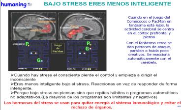 EEG PACMAN COMECOCOS