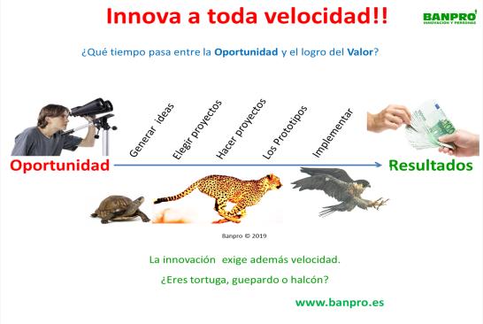 velocidad de innovación.png